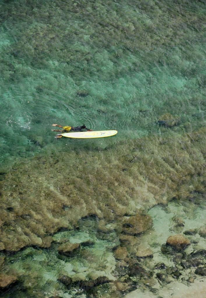 Maui Hawaii Surfer